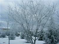 Winter in Ahlatlibel Photo Gallery 1 (Ankara)