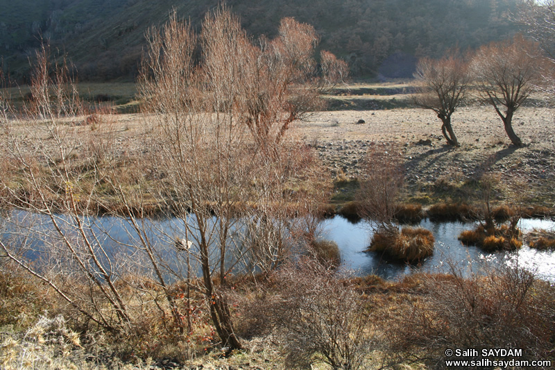 Alicin Canyon Photo Gallery 7 (Ankara, Kizilcahamam, Celtikci)
