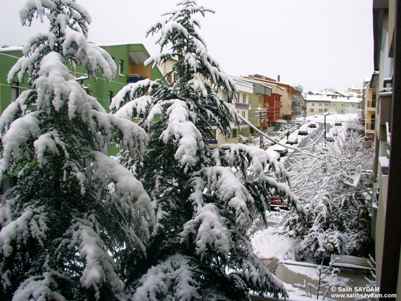 Winter in Ankara Photo Gallery (Ankara)