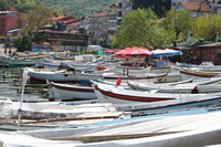 Rowing Boat Photo Gallery 1 (Bartin, Amasra)