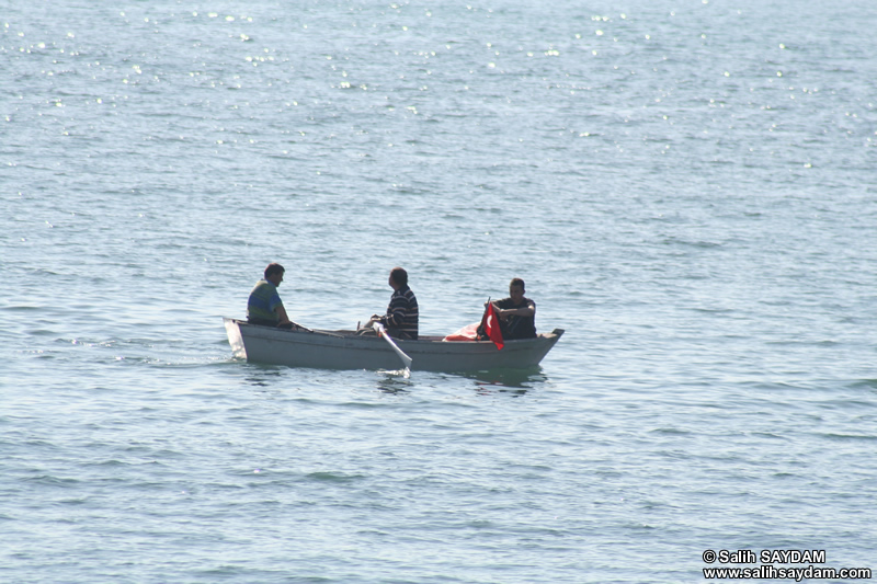Rowing Boat Photo Gallery 2 (Bartin, Amasra)