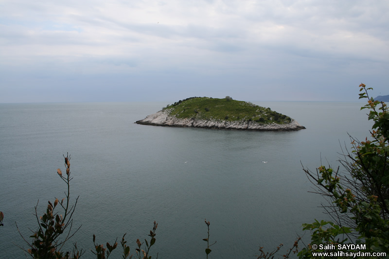 Rabbit Island Photo Gallery 2 (Bartin, Amasra)