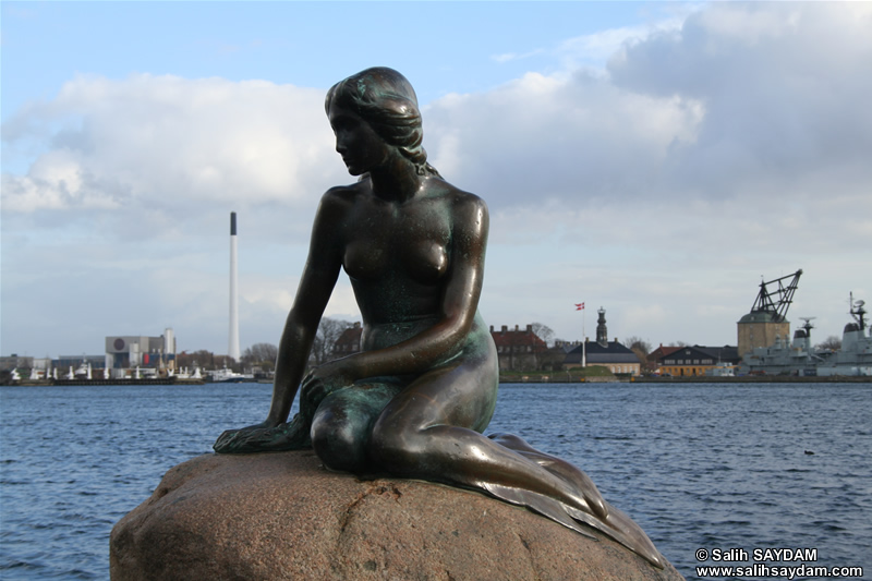 Sculpture of The Little Mermaid Photo Gallery (Copenhagen, Denmark)