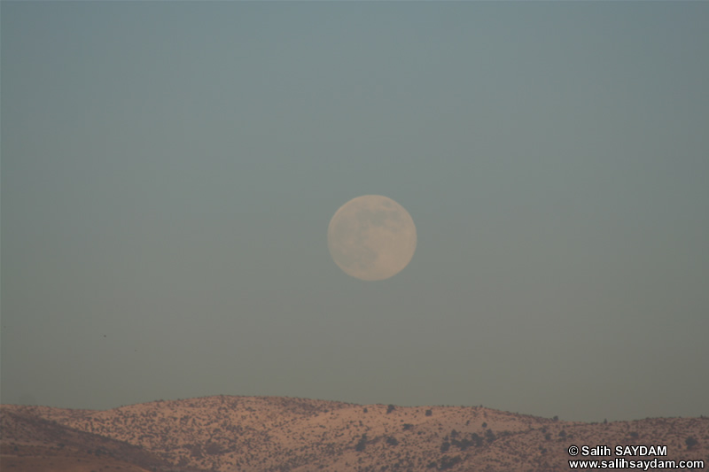 Fullmoon Photo Gallery 4 (Ankara)
