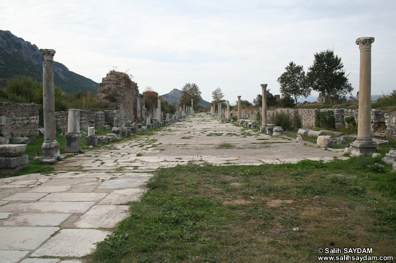 Ephesus Antique City Photo Gallery 8 (Arcadiane Avenue) (Selcuk, Izmir)