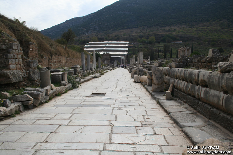 Ephesus Antique City Photo Gallery 24 (Marble Way) (Selcuk, Izmir)