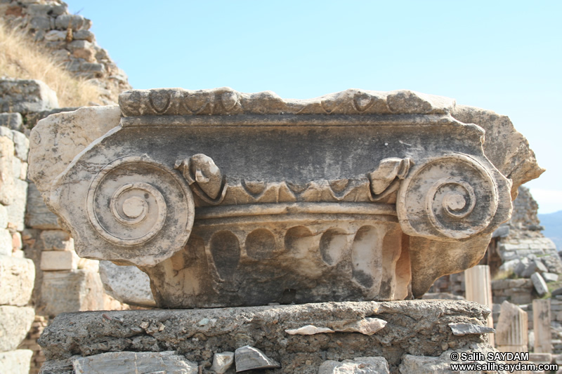 Ephesus Antique City Photo Gallery 30 (Abacus) (Selcuk, Izmir)