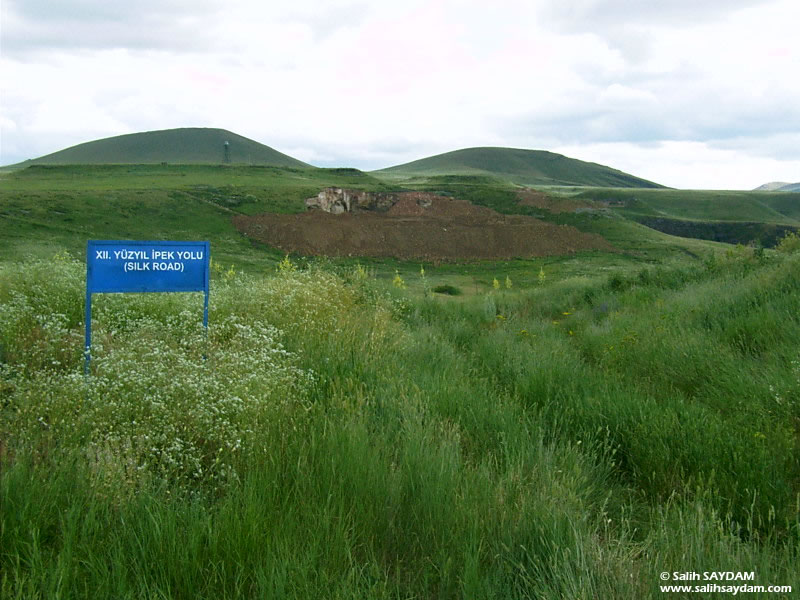 Ani Ruins Photo Gallery 16 (12th Centhury Silk Road) (Kars, Ani)
