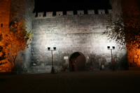 Kayseri Citadel (At Night) Photo Gallery 3 (Kayseri)