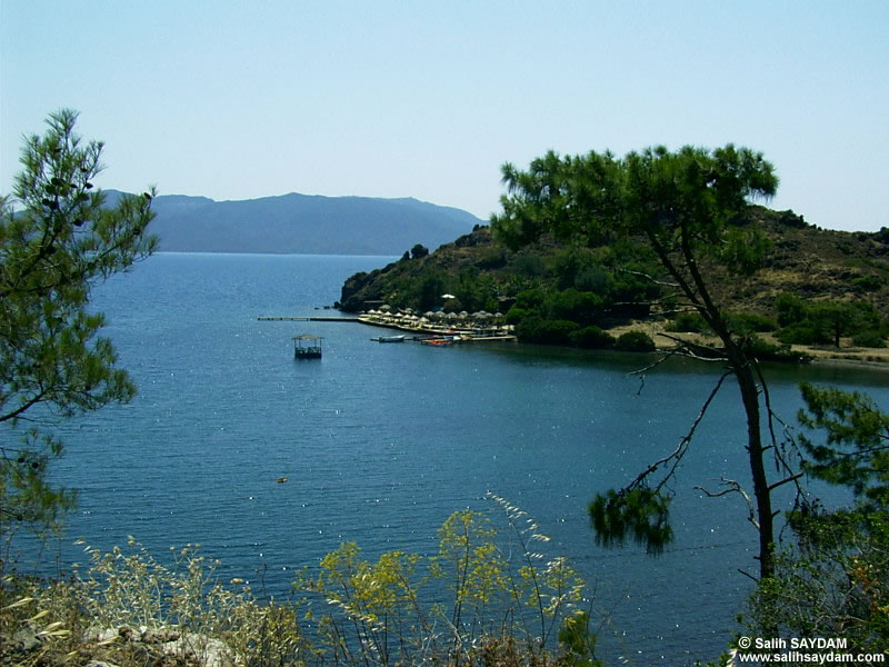 Bortubet Photo Gallery (Mugla)