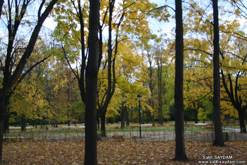 The Saxon Garden (Ogr�d Saski) Photo Gallery 2 (Warsaw, Poland)