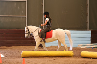 Sevenay Saydam Photo Gallery 9 (Horse Riding)