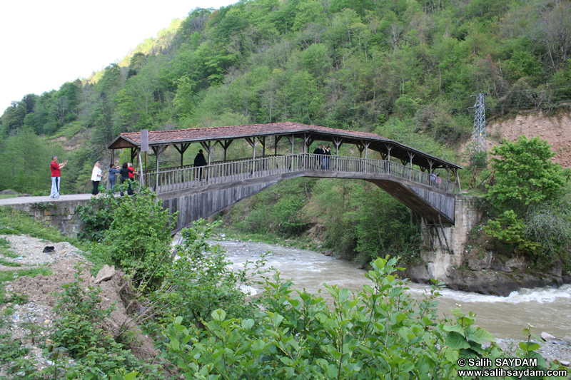 Hapsiyas Bridge Photo Gallery 1 (Trabzon)