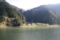 Uzungol (Long Lake) Photo Gallery 3 (Trabzon)